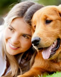 Tierhalterhaftpflicht im kostenlosen Vergleich